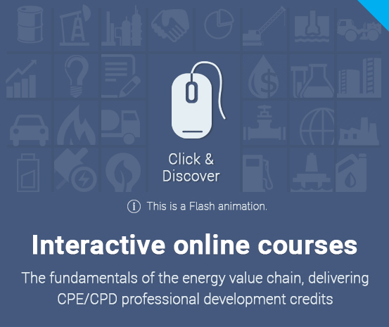 Interactive online courses